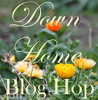 DownHomeBlog_TillysNest